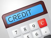Credit Calculator Shows Debit Card And Calculate