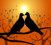 pic of adoration  - Love Birds Indicating Adoration Dating And Romance - JPG