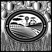 Retro farm black and white. Vector