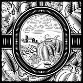 Pumpkin harvest black and white. Vector