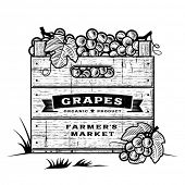 Retro crate of grapes black and white. Editable vector illustration with clipping mask.