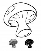 picture of spores  - vector illustration of mushroom in black and white - JPG