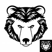 Bear Head Logo or Icon