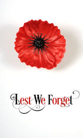 picture of lapel  - Lest We Forget Red Flanders Poppy Lapel Pin Badge for November 11 Remembrance Day appeal - JPG