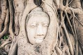 stock photo of buddha  - Head of Buddha statue in the tree roots at Wat Mahathat temple Ayutthaya Thailand - JPG