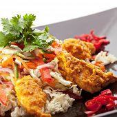 picture of curry chicken  - Indian Cuisine  - JPG
