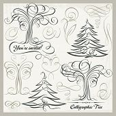 foto of scroll design  - Vector set of 14 calligraphic design elements - JPG