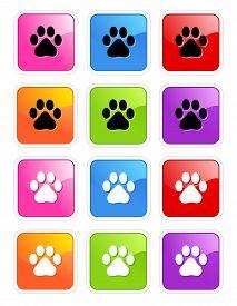 image of dog tracks  - Cute pets  - JPG