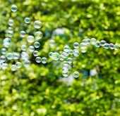 picture of blowers  - Rainbow bubbles from the bubble blower - JPG