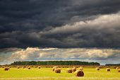 picture of hayfield  - Landscape with hayfield and storm clouds - JPG