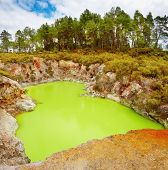 Devil's Bath volcanic crater in Wai-O-Tapu thermal area, New Zealand