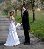 stock photo of wedding couple  - young wedding couple  - JPG
