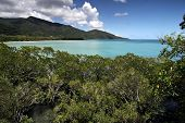 Cape Tribulation, Far North Queensland