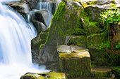 Cachoeira da floresta, frescor de Primavera