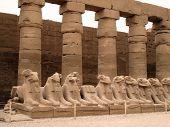 antiguas estatuas en un Egipto