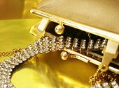 diamond necklace in golden womanish handbag