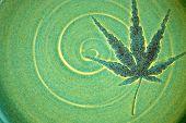 Leaf Swirl Hypnosis