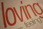 Lovin Feeling poster