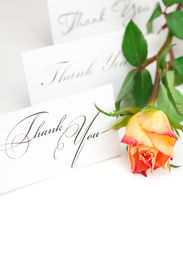picture of thank you note  - yellow red rose and a card with the words thank you isolated on white - JPG