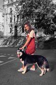 Loving Caring Woman Feeling Nice While Petting Her Nice Dark Dog While Walking poster