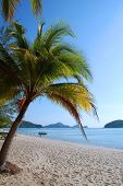 Beauitiful Tropical Beach Of  Langkawi