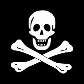 image of skull crossbones flag  - pirate flag with skull and crossbones toxic sign - JPG