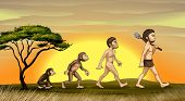 illustration of picture showing evolution of man