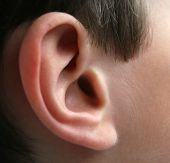 stock photo of inner ear  - A closeup of an 8 year old boy - JPG