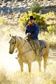 stock photo of buckaroo  - Cowboy in Early Morning Light sitting on his horse in the dust