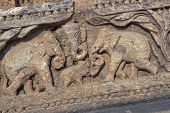 Carved Elephants Adorning Konark Temple