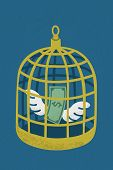 Dollar in golden bird cage , eps10 vector format