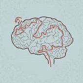 brain maze with correct path , Vector