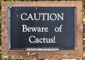 Coution Beware Of Cactus!