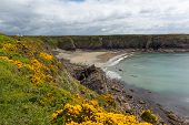 Caerfai Bay Pembrokeshire Wales