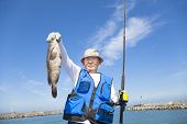 picture of grouper  - happy senior fisherman showing large grouper fish - JPG