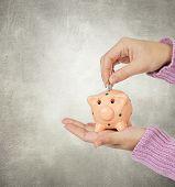 Hand eine Münze in ein Sparschwein auf grauem Hintergrund einfügen