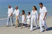 A happy family of grandparents, mother, father and two children, son and daughter, walking holding h
