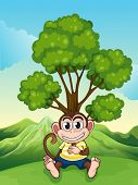 Illustration of a monkey frowning under the tree at the hilltop