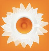 Cup of tea and saucer on a white petals. Vector illustration.