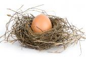 Ovos no ninho isolado no fundo branco