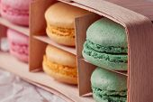 Multicolored macaroon on colorful