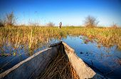 Panorama of Okavango delta with makoro boat in Botswana, Africa