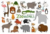 image of zoo  - Set of hand - JPG