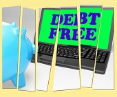 Debt Free Piggy Bank Shows No Debts And Financial Freedom