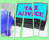 Tax Advice Piggy Bank Shows Professional Advising On  Taxation