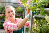 Smiling woman working in garden center with potted flowers sunny