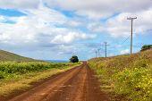 Easter Island Dirt Road