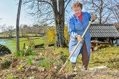 picture of hoe  - Elderly woman wearing blue coat gardening with a hoe - JPG