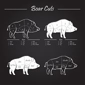 stock photo of boar  - Wild hog boar game meat cut diagram scheme  - JPG