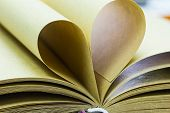 Pages Of Open Book Rolled